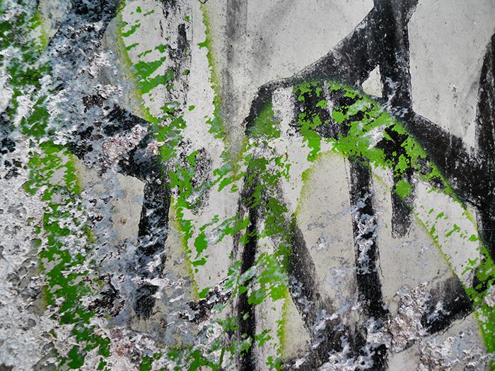 1311_graffiti_700