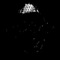 Logo Seiterblick